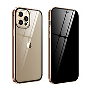 Luxury Aluminum Metal Frame Mirror Cover Case 360 Degrees T05 for Apple iPhone 12 Pro Gold